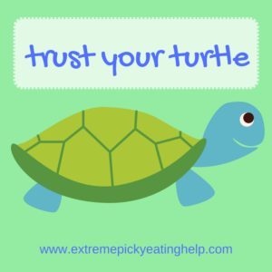 trust your turtle