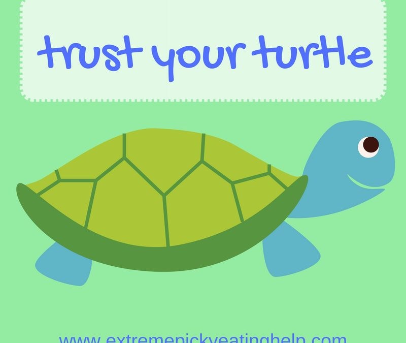 Trust Your Turtle: Patience with Picky Eating Progress